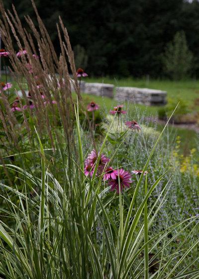 Eclectic  by Matthew Cunningham Landscape Design LLC