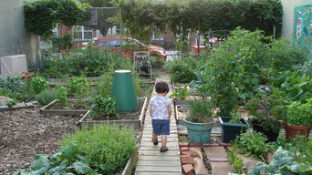 My son  and garden