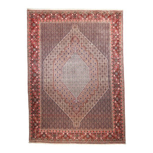 Senneh Persian Rug, Hand-Knotted, 350x250 cm