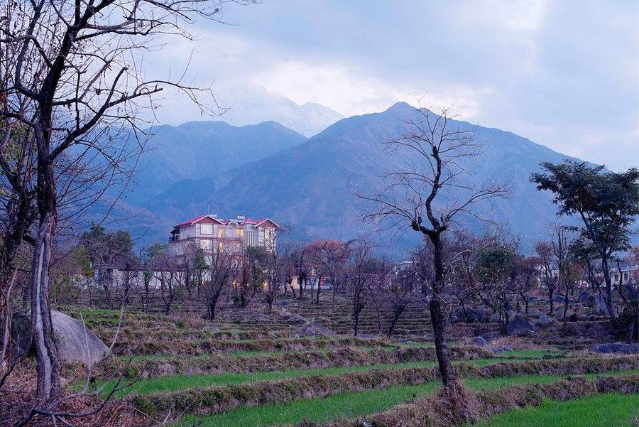 Hotel White Ridge, Dharamshala