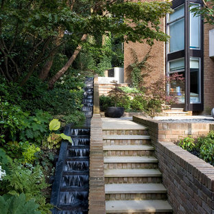 Contemporary garden in London.