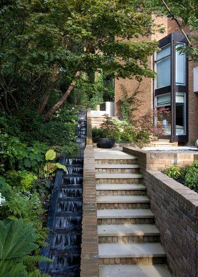 Contemporary Garden Contemporary Garden