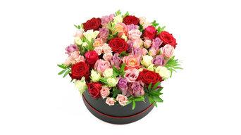Flowers Stockwell