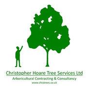 Christopher Hoare Tree Services Ltd's photo