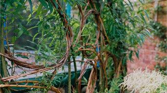 Company Highlight Video by The Botanical Gardener Ltd