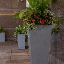 Flower Planters: Summer