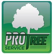 Foto de Pro Tree Service
