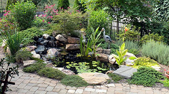 8' x 11' eco-system pond