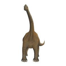 Brachiosaurus Wall Decal