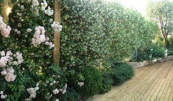 Realizazzione Roof Garden