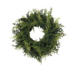 """24"""" Buckler Fern & Grass Wreath, Green"""