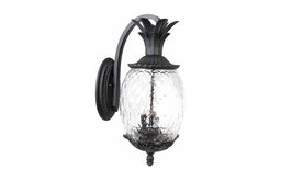 Acclaim Lighting Lanai Outdoor Sconce