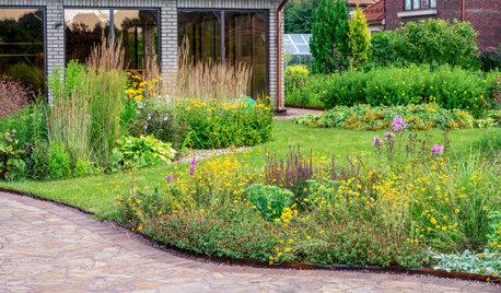 Проект недели: Пейзажный сад от телеведущей