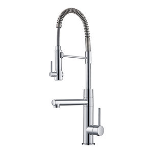 Single Handle Pull-Down Faucet With Commercial Style Pre ...