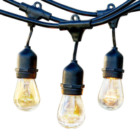Brightech Ambience Pro Incandescent Waterproof String Lights, 24' Strand