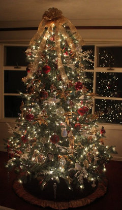 Tree To Go With The Ornaments That We Collected Over Years It Looked Awful And Was Returned I Have Must White Lights