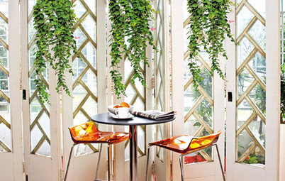 Bring On the Green: Decorating with Indoor Plants
