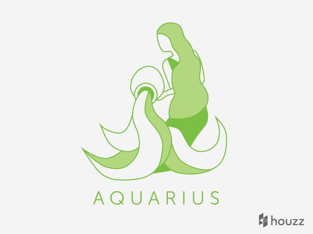 Designing With the Stars: Aquarius