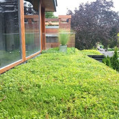 SKYSPACE Green Roofs's photo