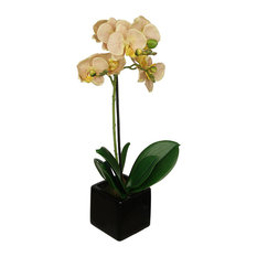 50 most popular contemporary individual artificial flowers for 2018 house of silk flowers inc artificial veined 18 baby orchid black cube mightylinksfo