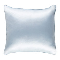 Solid and Border Polyester Pale Blue Accent Pillow, 18  x18