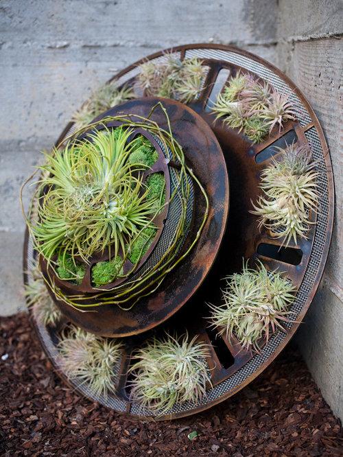 Holiday Wreaths - Outdoor Decor