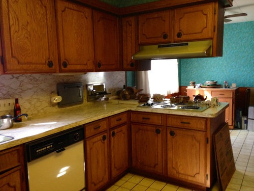 Charmant Need Advice On My Kitchen Cabinets And Budget Remodel