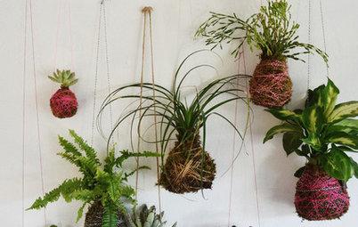 DIY Project: How to Make a 'Kokedama' String Garden