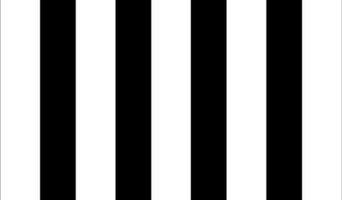 Beach Stripe in Albatross Black