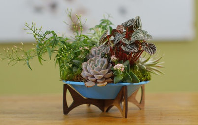 Houzz TV: Create a Living Arrangement for Your Tabletop