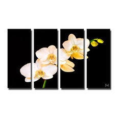 """Naturally Designed"" 4-Piece Canvas Art Set By Bruce Bain"