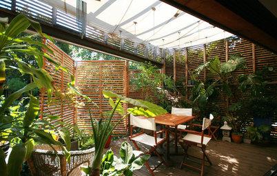 Piante Tropicali per Tramutare in una Giungla il Giardino o il Terrazzo