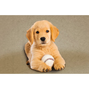 Puppy With Baseball Gallery Door Mat, Large