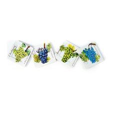 FountainArts - Wine Country 8 quot; Plate, Set of 4 Sauvignon, Zinfandel, Cabernet, Chardonnay - Dec