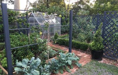 Как правильно: Сделать огородные опоры украшением участка