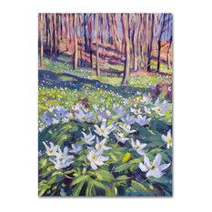 "David Lloyd Glover 'Anemones in the Meadow' Canvas Art, 14""x19"""