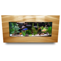 Aussie Aquariums 2.0 Wall Mounted Aquarium - Skyline - Brushed Gold