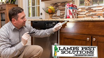 Lamp's Pest Solutions