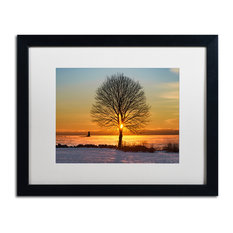 Michael Blanchette Photography 'Eye of the Tree' Matted Framed Art, 20x16