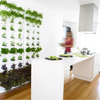 Guest Picks: Herb Gardens for Small Kitchens and Gardens