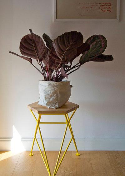 by Frush [design sostenibile]