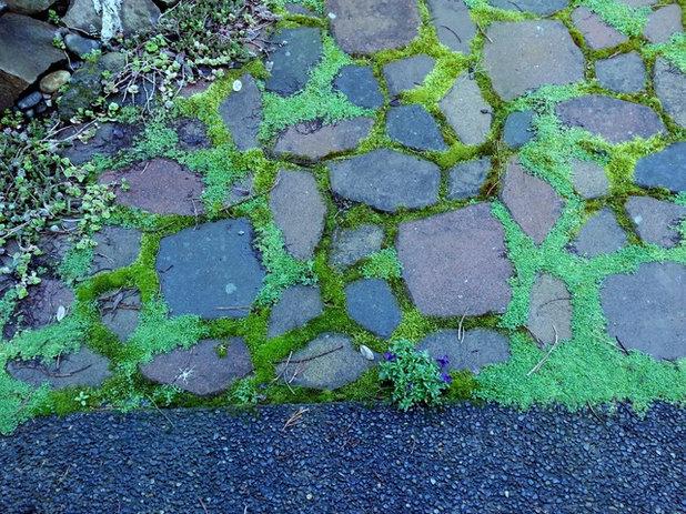 by Rain Garden Nursery LandscapeMakeoverDesignStaging