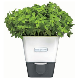 Contemporary Outdoor Pots And Planters by DKB HOUSEHOLD USA CORP