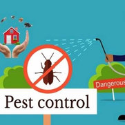 Emergency Pest Control Brisbane's photo