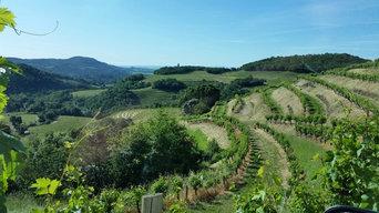 Vineyard Estate Napa