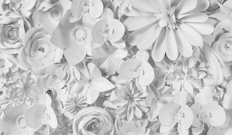 Filigrane Kunst aus Papier: Sabrina Transiskus