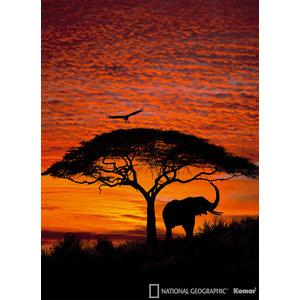 African Sunset Elephant Photo Wall Mural, 194x270 cm
