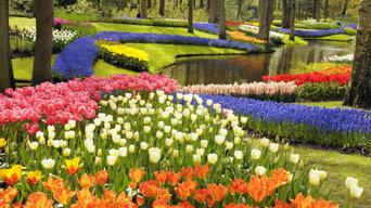 plant heavens