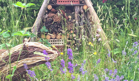 How to Create a Rustic Garden, Even in a Tiny Urban Plot