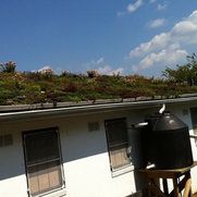 Green Roof Works Inc.'s photo